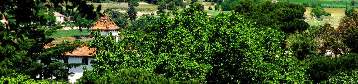 1152X270 Casa Avis La Roca